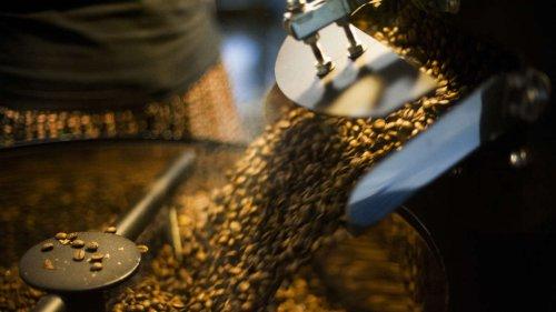 US-Studie: Führt Kaffee zu Herz-Rhythmus-Störungen?