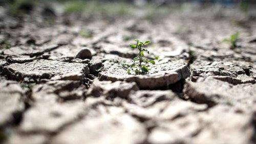 Weltklimarat IPCC warnt vor gesundheitlichen Folgen des Klimawandels – Viele bereits jetzt unvermeidbar