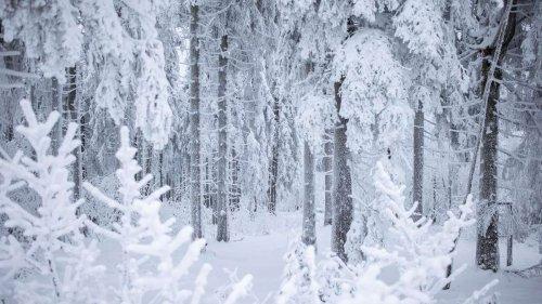 Winter 2021: Polarwirbelsplit im Anmarsch – Deutschland droht Eiseskälte
