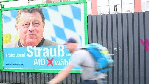 AfD-Spendenskandal schlimmer als gedacht? Enthüllungen drängen rechte Partei an die Wand