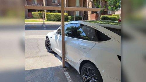 Tesla soll selbst ausparken – und bleibt an Pfosten hängen