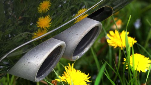 Natur und  Umwelt cover image