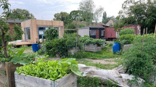 """Essbare Städte: """"Durch einen Park wird flaniert, ein Garten wird beackert."""""""