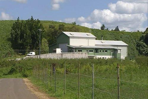 Les nuisances de l'usine d'équarissage de Gédon posent toujours problème aux riverains - Guadeloupe la 1ère
