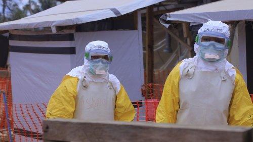 Cinq questions sur le virus Ebola qui resurgit dans l'est de la République démocratique du Congo