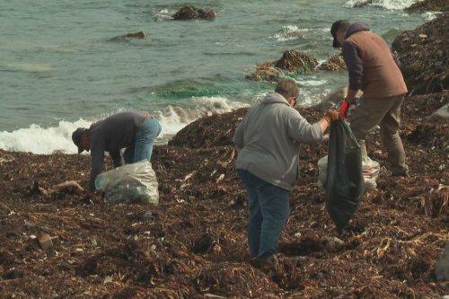 Pollution à Saint-Pierre et Miquelon : le collectif Caillou tout prop' consterné face à la quantité de déchets - Saint-Pierre et Miquelon la 1ère