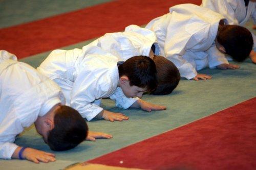 Sport : 110 clubs de judo proposent des licences gratuites pour survivre à la crise du Covid-19