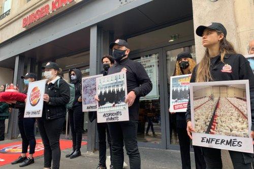 L'association L 214 manifeste devant le Burger King de Nancy pour dénoncer les pratiques d'élevage de l'enseigne