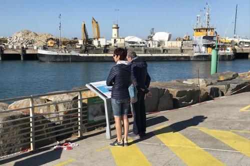 La Turballe : chantier d'agrandissement du port pour accueillir les navires de maintenance du parc éolien du Croisic
