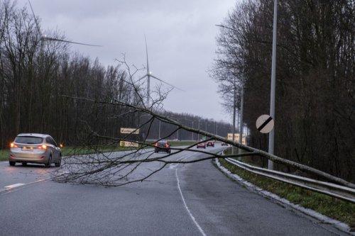 Alerte Météo : grosses rafales de vent annoncées dès mardi 19 octobre au soir en Normandie
