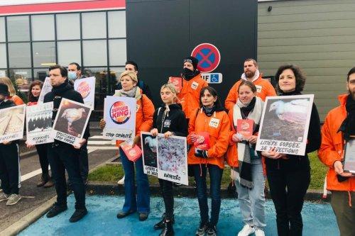 Strasbourg : pour dénoncer les conditions d'élevage des poulets, L214 manifeste samedi 16 octobre devant un Burger King