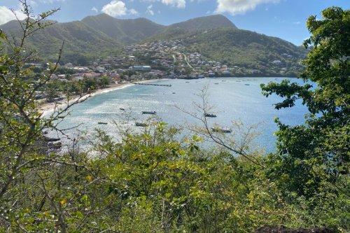 La Martinique, sera-t-elle Réserve mondiale de Biosphère ? La réponse mercredi 15 septembre 2021 - Martinique la 1ère