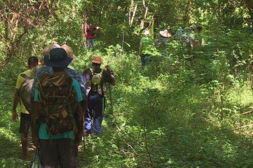 Certains riverains de Schoelcher inquiets par rapport à un projet de désenclavement de Terreville - Martinique la 1ère