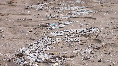 Environnement : deux ONG lancent une expédition en mer pour alerter sur la pollution des billes de plastique