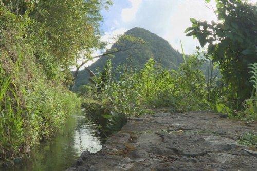 Des experts internationaux en Martinique pour évaluer sa candidature au patrimoine mondial - Martinique la 1ère