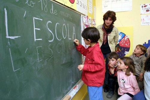 Langues régionales : des solutions pour préserver l'enseignement immersif dans les écoles