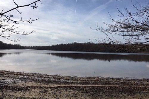 Indre : des primes pour supprimer des étangs