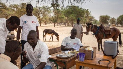 Covid-19 : les faiblesses statistiques de certains pays africains empêchent une évaluation fiable de l'épidémie
