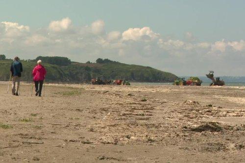 """Algues vertes. """"Si un enfant marche sur cette plage, il y a un risque de décès très rapide"""", alerte un urgentiste"""