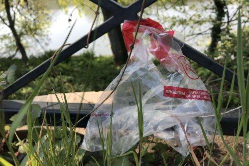 Nantes : la guerre aux plastiques du marché de la Petite Hollande est déclarée