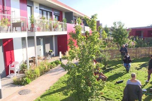 « Cela m'a changé la vie » : étudiants et retraités s'épaulent dans ce village intergénérationnel de Clermont-Ferrand