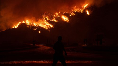 """""""Un paysage apocalyptique"""", il fait """"45°C et plus"""" : la Turquie suffoque sous la canicule et les incendies"""