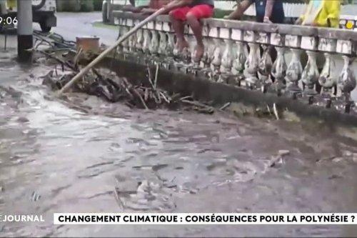 COP 26 : la Polynésie face au réchauffement climatique - Polynésie la 1ère