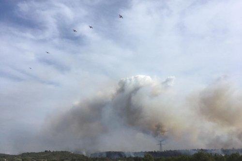 Aude : un important feu de forêt entre Narbonne et Carcassonne, 500 hectares déjà partis en fumée