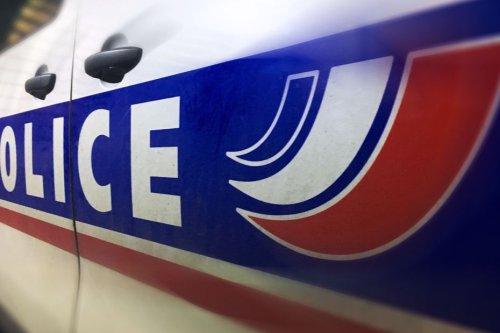 Clermont-Ferrand : un couple placé en garde à vue pour avoir battu son chien