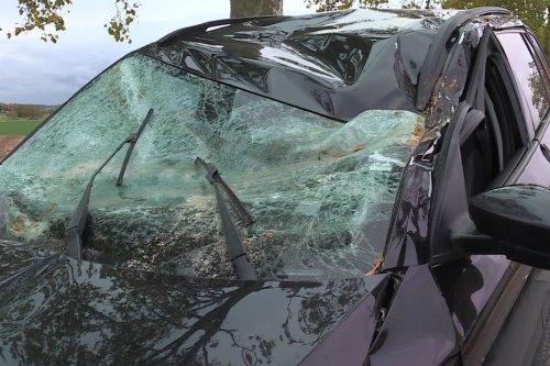 Tempête Aurore en Lorraine : trains à l'arrêt, arbres sur les routes, les dégâts sont impressionnants
