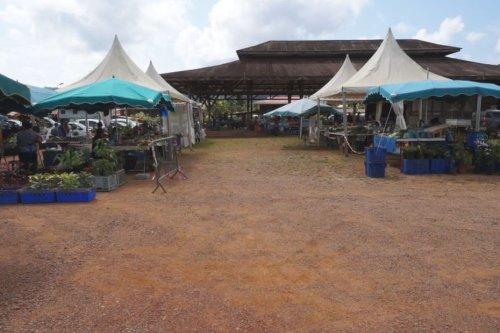 Marché de Cacao : affluence modeste pour la réouverture le dimanche - Guyane la 1ère