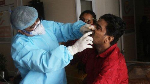 Covid-19 en Inde : cinq questions sur le champignon mortel qui infecte de nombreux malades