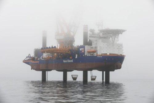 Eolien offshore en Normandie : une menace pour la biodiversité marine ?