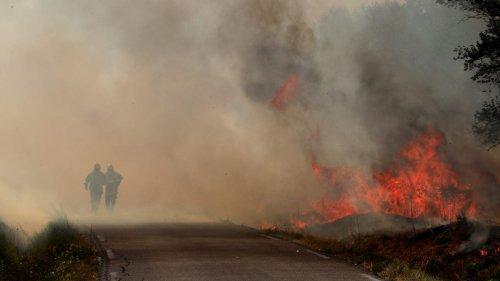 """Bouches-du-Rhône : """"La saison des incendies démarre sur les chapeaux de roues"""", alertent les pompiers"""