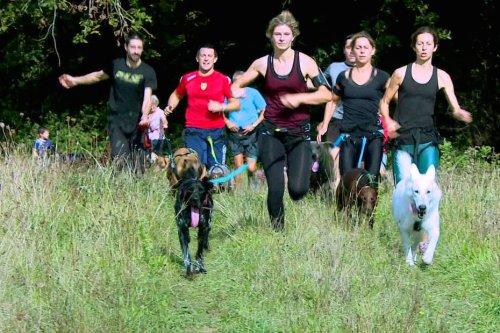 Canicross en Dordogne : le plaisir de courir à six pattes