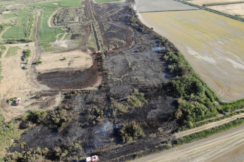 Arles : le feu saute d'une haie à l'autre et parcourt 20 hectares