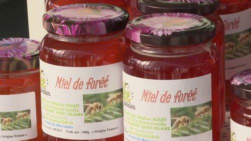 Abeilles : une récolte de miel catastrophique en 2021