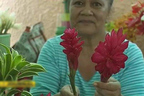 Les opuhi de plus en plus rares - Polynésie la 1ère