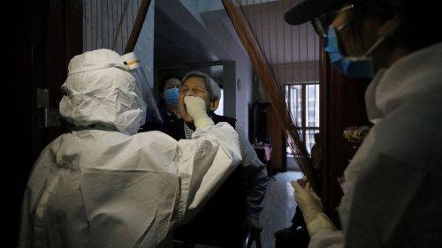 """Covid-19 : """"Il y a urgence"""" à trouver l'origine du coronavirus, alerte un virologue, qui n'exclut pas la piste d'un accident de laboratoire"""