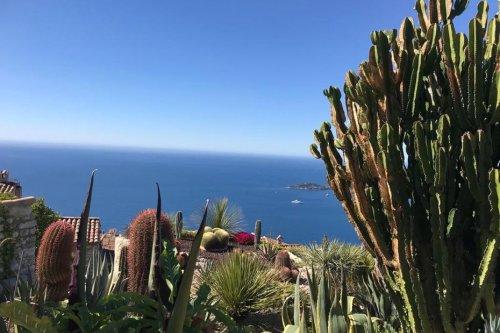 DIAPORAMA. A découvrir dans les Alpes-Maritimes : le jardin exotique d'Eze