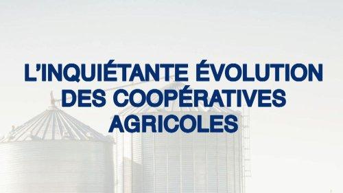 In Vivo, Sodiaal, Tereos : quand les coopératives agricoles deviennent des multinationales aux filières opaques