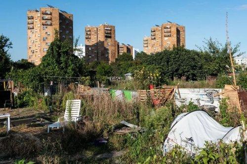 JO de Paris 2024 : la Justice suspend le permis de construire de la piscine sur les jardins d'Aubervilliers