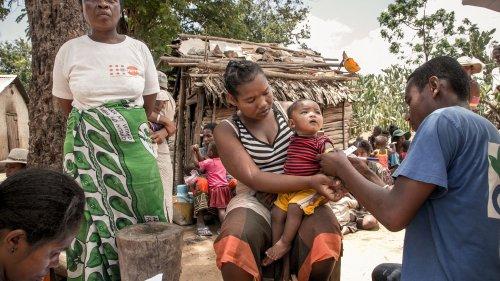 Madagascar : ce que l'on sait de la famine qui ravage la Grande Ile