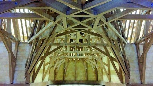 Notre-Dame : des chênes pour contribuer au patrimoine