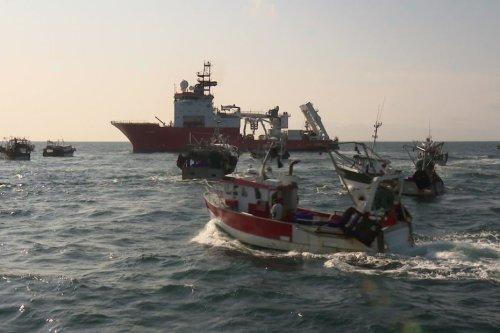 Parc éolien en baie de Saint-Brieuc : Sea Shepherd et Gardez les caps demandent l'abrogation de l'arrêté préfectoral