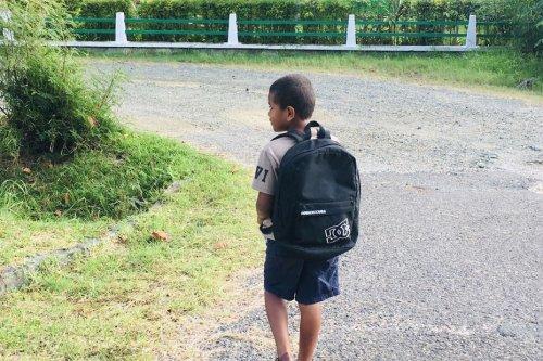 Report de la rentrée scolaire en province Nord et en primaire en province Sud : quelles répercussions pour les enfants? - Nouvelle-Calédonie la 1ère
