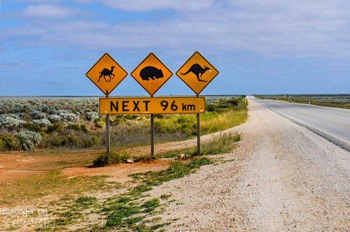 Südaustralien - Wo Genuss und Nervenkitzel aufeinandertreffen.