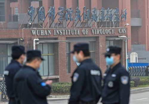 Wuhan Scientists Genetically Manipulated Coronavirus