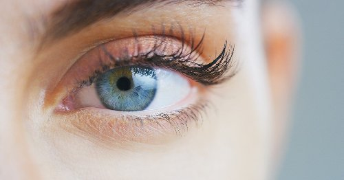 Penn Scientists Correct Genetic Blindness With a Single Injection into the Eye