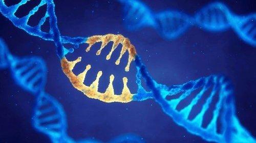 Reversible Gene Editing Is On The Horizon